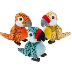 Loro Papagayo Colores
